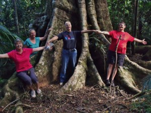 Kuranda Conservation Group